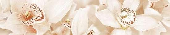 Global Tile (Aroma) 1504-0125 Бордюр керамический. AROMA Бежевый. 45*7,5