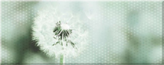 Керамин (Концепт) КОНЦ7ОДТ1/50/20/13 Декор керамический. Концепт_Ker _ 50*20 Одуванчик Тип 1
