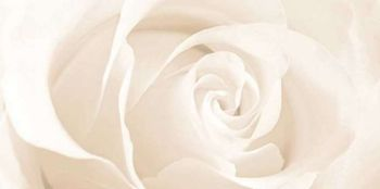 Cersanit (Effecta) (C-EC2L011D) вставка: Effecta, flower, бежевый, 29,7x60