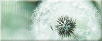 Керамин (Концепт) КОНЦ7ОДТ2/50/20/13 Декор керамический. Концепт_Ker _ 50*20 Одуванчик Тип 2