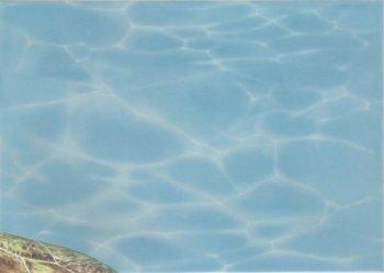 Березакерамика (Лазурь) Декор Панно Морской мир 8 бирюзовый 25*35