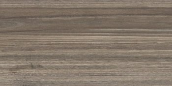 New Trend  (Essense) Essense Brown WT9ESS08 Плитка настенная 249*500*8,5