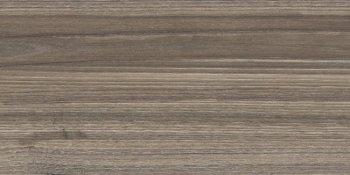 New Trend  (Retro) Essense Brown WT9ESS08 Плитка настенная 249*500*8,5